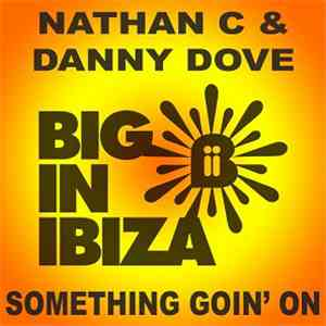 Nathan C & Danny Dove - Something Goin' On album