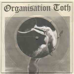 Organisation Toth - Tribute album